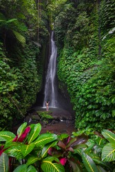 Travel lifestyle. Young traveler woman wearing bikini at waterfall in tropical forest. Excited Caucasian woman raising arms in front of waterfall. View from back. Leke Leke waterfall, Bali.