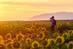 Travel Photography,Travel Photographer Ready to Take Landscape Pictures on the sunflower field in Thailand