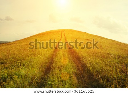 Travel Road Outdoor. Sunrise, Straight ahead Way in nature