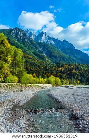 Travel to Eastern Julian Alps, fabulous Slovenia. The famous Triglav Park. The shores of Lake Jasne. Great Pysnitsa Stream. The mountains are overgrown with dense mixed forest Zdjęcia stock ©