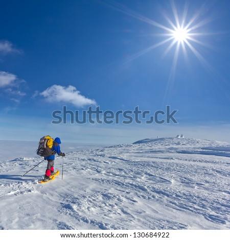 traveler among a winter snowbound plains