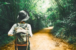 Traveler woman with backpack walk alone on path tree tunnel in the tropical forest Krabi, Travel nature adventure Thailand, Tourism beautiful destination Asia, Tourist on summer holiday vacation trip