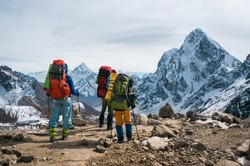 Travellers in the Himalayas