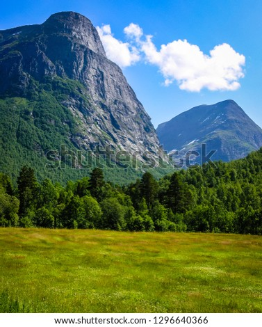 Travelling to Norway. Forest in the mountains #1296640366