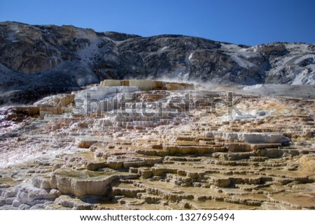 Travertine terraces at Mammoth Hot Springs in Yellowstone National Park #1327695494