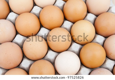 tray of fresh brown eggs