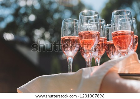 Tray of glasses of summery rose sparkling wine for guests at a wedding reception in the sun rays #1231007896