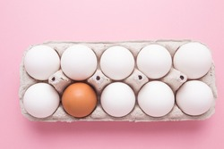 Tray with chicken eggs on a pink background. A brown egg among white. The concept of individuality.