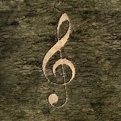 treble clef on on the bark