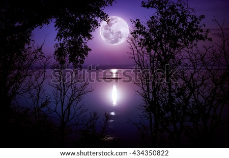 Tree against sky on tranquil lake. Silhouettes of woods and bright full moon would make a nice picture. Beauty of nature use as background. The moon taken with my own camera, no NASA images used.