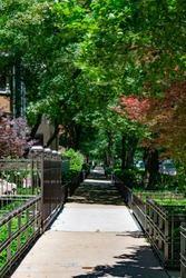 Tree and Fence lined Sidewalk in front of Old Homes in the Gold Coast Neighborhood of Chicago