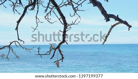 tree and sea. blue sky and sea. blue sea #1397199377