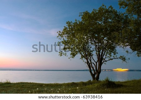 Tree and sunset at the Baltic Sea