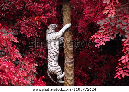 tree and tiger #1185772624