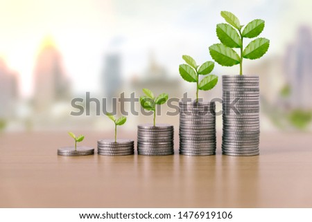 Tree are grow up on coins stack and financial report on desk with blurred building on background. Concept of finance investment investing.