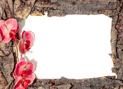 Tree Bark Frame with Pink Flowers placed to the left. Shot on a White Background with Copy Space.