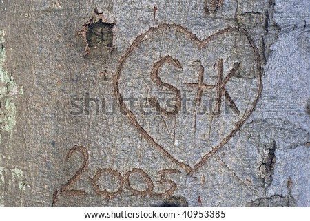 Tree bark in forest with lovers first letters  in heart.