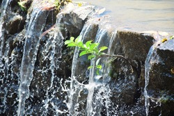 Tree between waterfalls .Small waterfall in park. Waterfall in thailand