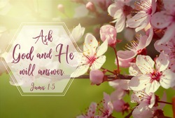 Tree blooming in spring with a bible verse form the book of James
