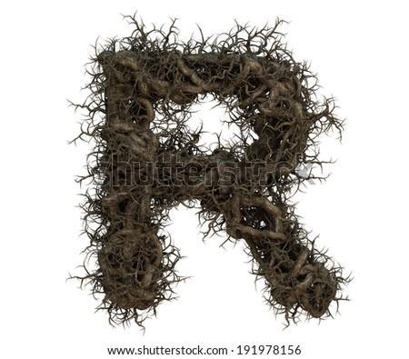 tree branch alphabet  Photo stock ©