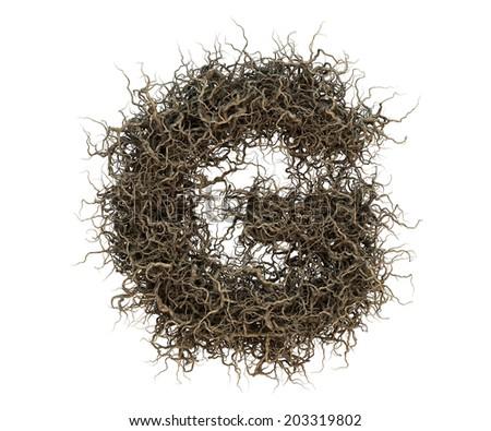 tree branch alphabet set 2 Imagine de stoc ©