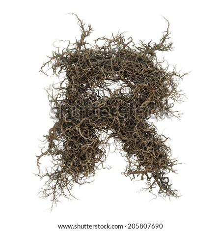 tree branch alphabet set 3 Photo stock ©