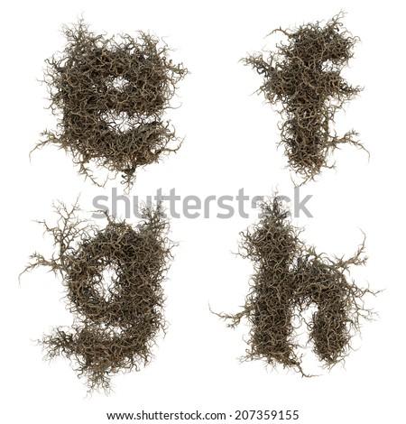 tree branch alphabet set 3 Imagine de stoc ©
