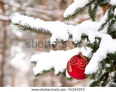 tree, christmas, snow