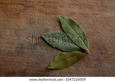 tree dry bay leaf on a rough wooden cutting board