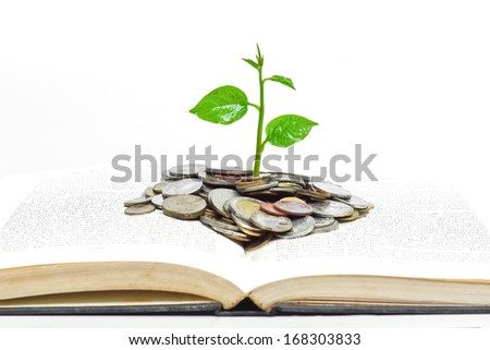 tree growing from books with coins / A big open book with coins and tree. \