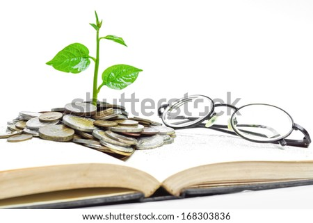 tree growing from books with coins and eye glasses / A big open book with coins and tree. \