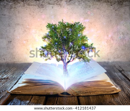 Tree Growing From The Old Book - Magic Shine