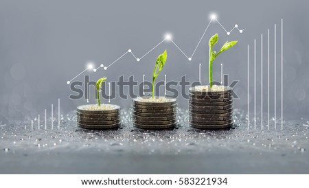 Tree growing on coins, Business save and growing finance, piles of coins, csr, trees growing on stack of coins, saving money, green graph, Concept of money #583221934