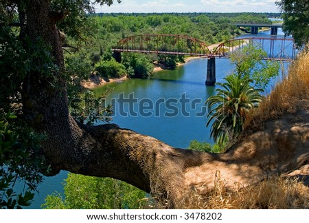 Tree growing over the river with an old red metal bridge in the background