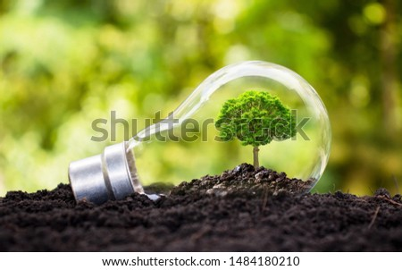 Tree grows in light bulbs, energy-saving and environmental concepts on Earth Day. #1484180210