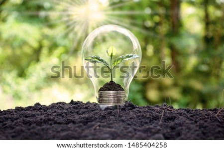 Tree grows in light bulbs, energy-saving and environmental concepts on Earth Day. #1485404258