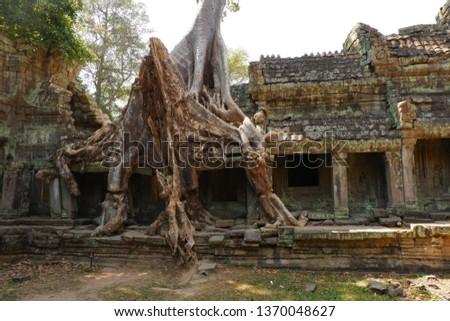 Tree grows on ruins at Preah Khan. Preah Khan is a temple at Siem Reap, Cambodia. #1370048627