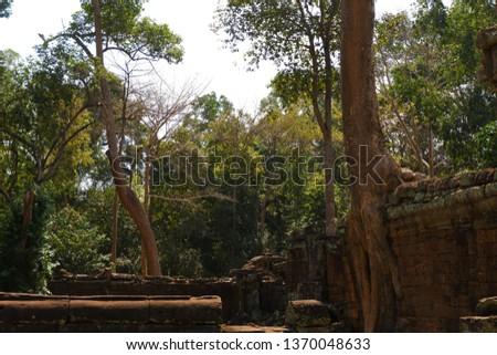 Tree grows on ruins at Preah Khan. Preah Khan is a temple at Siem Reap, Cambodia. #1370048633