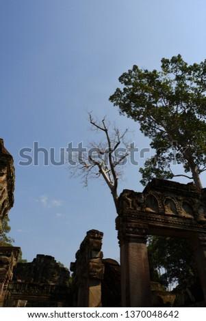 Tree grows on ruins at Preah Khan. Preah Khan is a temple at Siem Reap, Cambodia. #1370048642
