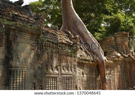 Tree grows on ruins at Preah Khan. Preah Khan is a temple at Siem Reap, Cambodia. #1370048645