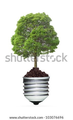 tree in a lightbulb, green energy concept