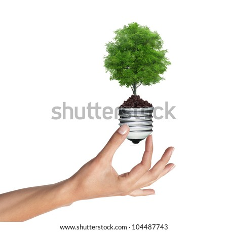 tree in a lightbulb in woman hand over white, green energy concept