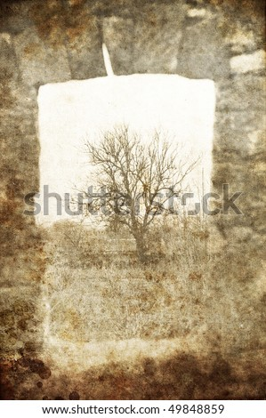 Tree in frame arch. Photo in old image style.