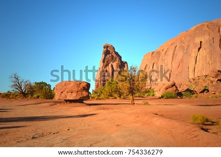 Tree in front of red sandstone rocks with a clear sky. Unusuall place in Monument Valley in Arizona, USA. End of the road in red desert in tribal land. #754336279
