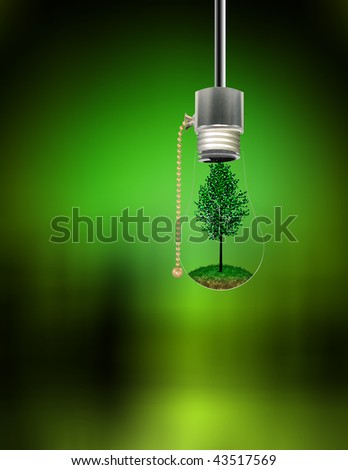 Tree in Hanging Bulb