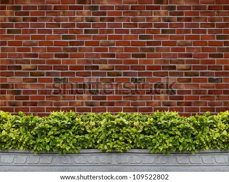Tree in pot with brick wall background