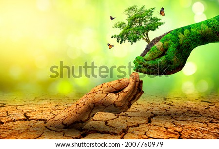 tree in two hands  with very different environments Earth Day or World Environment Day Global Warming and Pollution