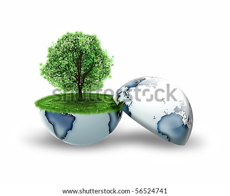 tree inside the earth isolated on a white background