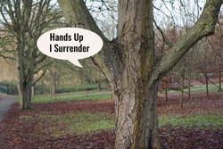 Tree is saying Hands up I surrender. This is a comedic photo