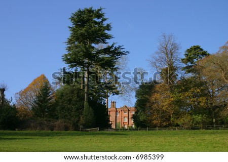 Tree line giving shape to the sky line in the grounds of an English stately home
